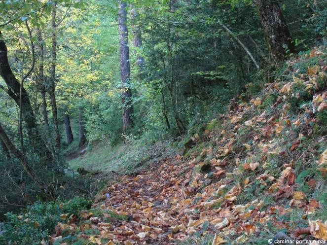 Primera parte del recorrido por el camino de Batestata