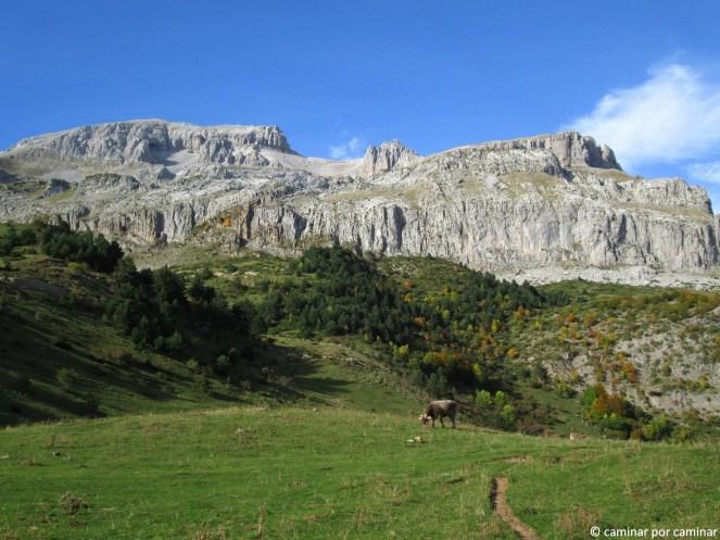 Llanos de Lizara y Bisaurín imponente