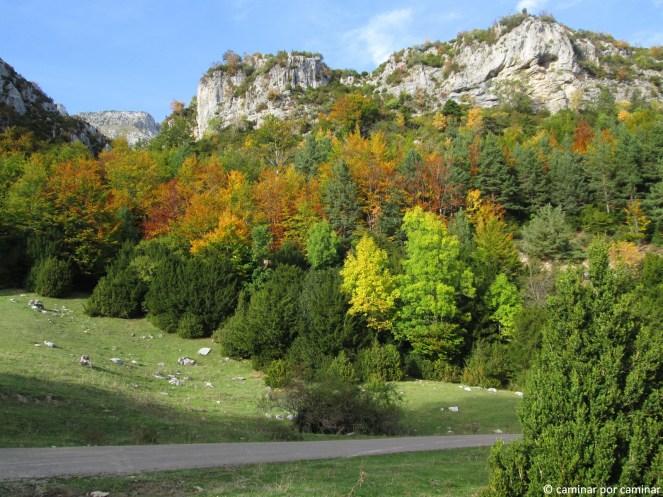 Las gamas cromáticas del otoño están aquí
