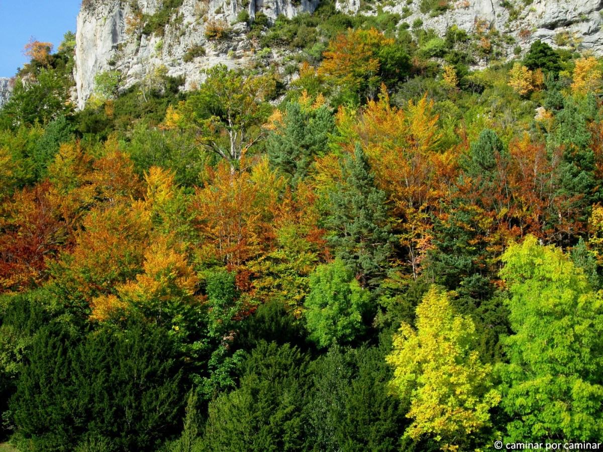 Labati, el despertar del otoño