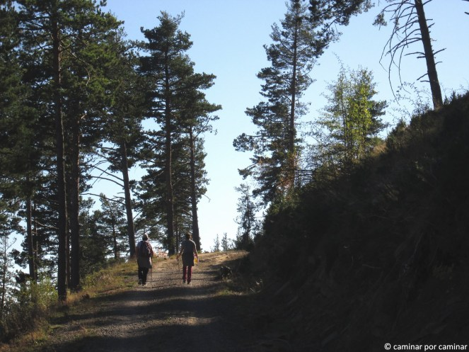 Camino de subida hacia el mirador