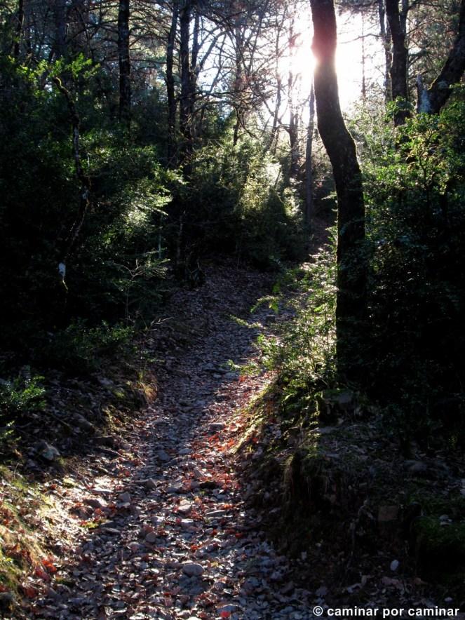 Camino de subida a Susín para disfrutar palmo a palmo