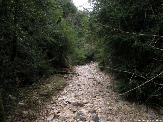 Cauce seco de la Pillera con vegetación exuberante