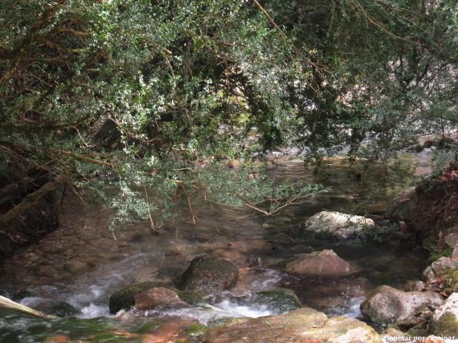 La fuente de Fuendeguaril rebosante de vida