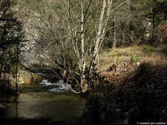 Claroscuros entre aguas impetuosas