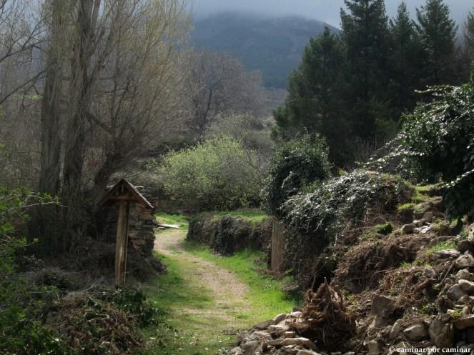 Evocador camino de entrada a Aldehuela de Ágreda