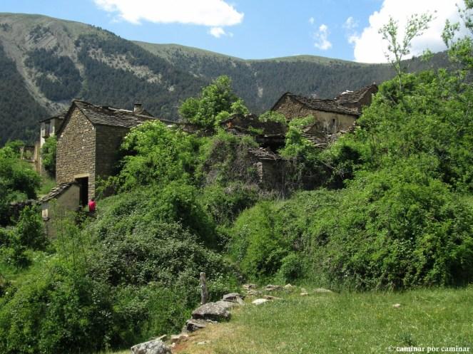 La vegetación selvática arrumba casas y paredes