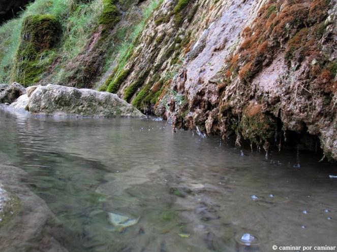 Agua cristalina, piedra toba y musgo