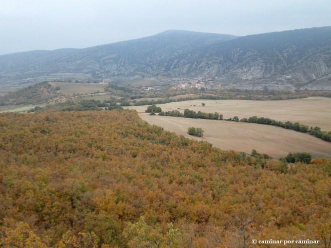 Desde el mirador: Bea con sus chebrones, bosques, tierras de labor, valle del alto Huerva