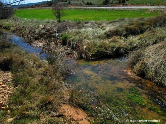 Nacimiento del río Huerva cerca de la ermita de la Virgen de la Silla (Foto tomada en 2013)
