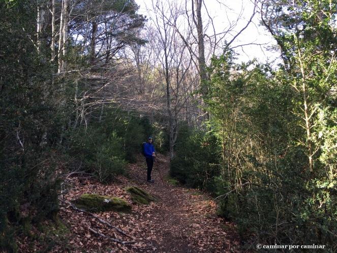 Fresca senda para respirar la humedad del bosque atlántico