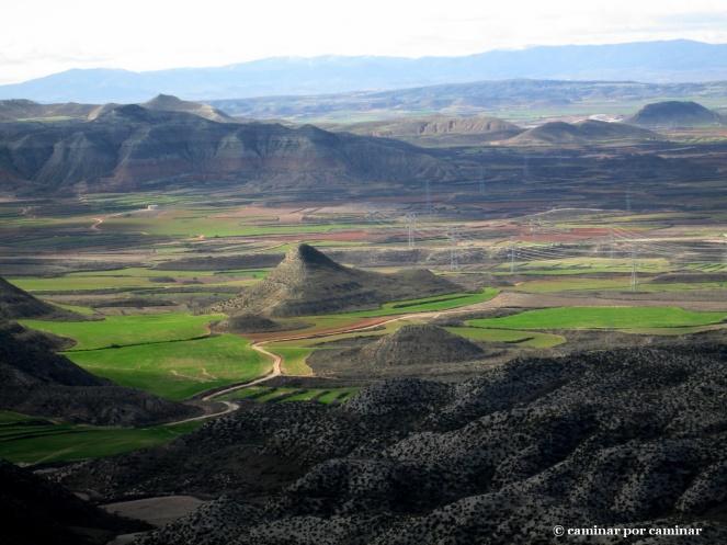 Donde se aplana la tierra aparecen los cultivos de Botorrita