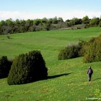 Santa Orosia desde Satué: el camino de umbría hacia la montaña sagrada