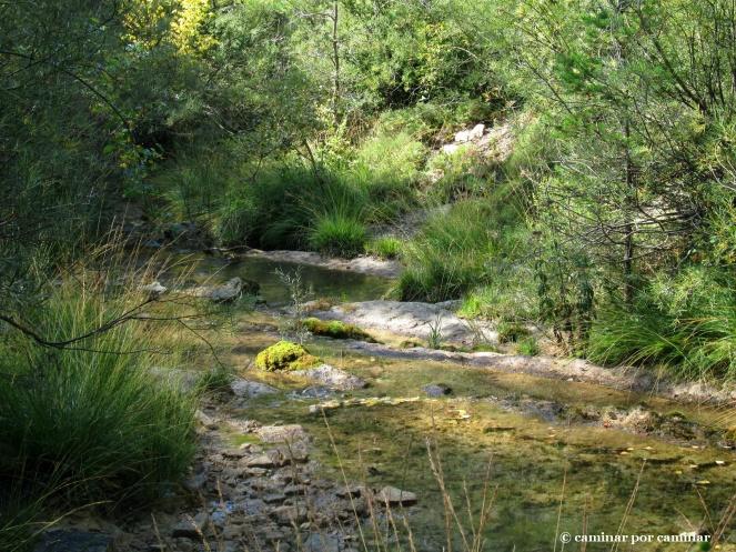 El Barranco de Ainielle ya no alimenta al molino, pero podría hacerlo