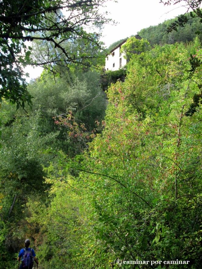De nuevo en Berbusa desde el Barranco del Lugar