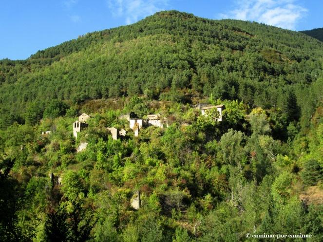 Las casas aún encaladas de Berbusa siguen refulgiendo entre los árboles