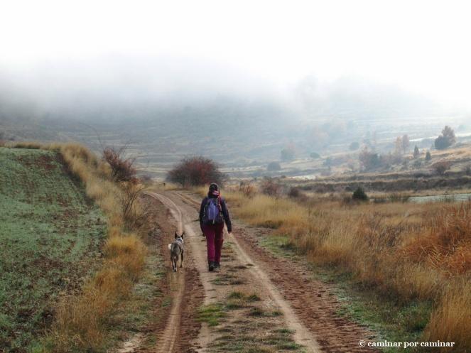 La niebla todavía nos niega el paisaje