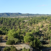 Barranc Fondo, la modestia de un río